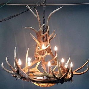 542-L mt bross elk antler chandelier