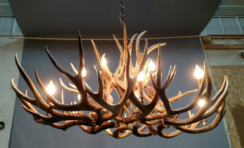 Bristlecone Antler Chandelier Rustic Oval Small The