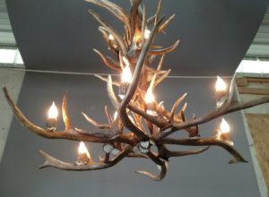 566-L elk antler chandelier