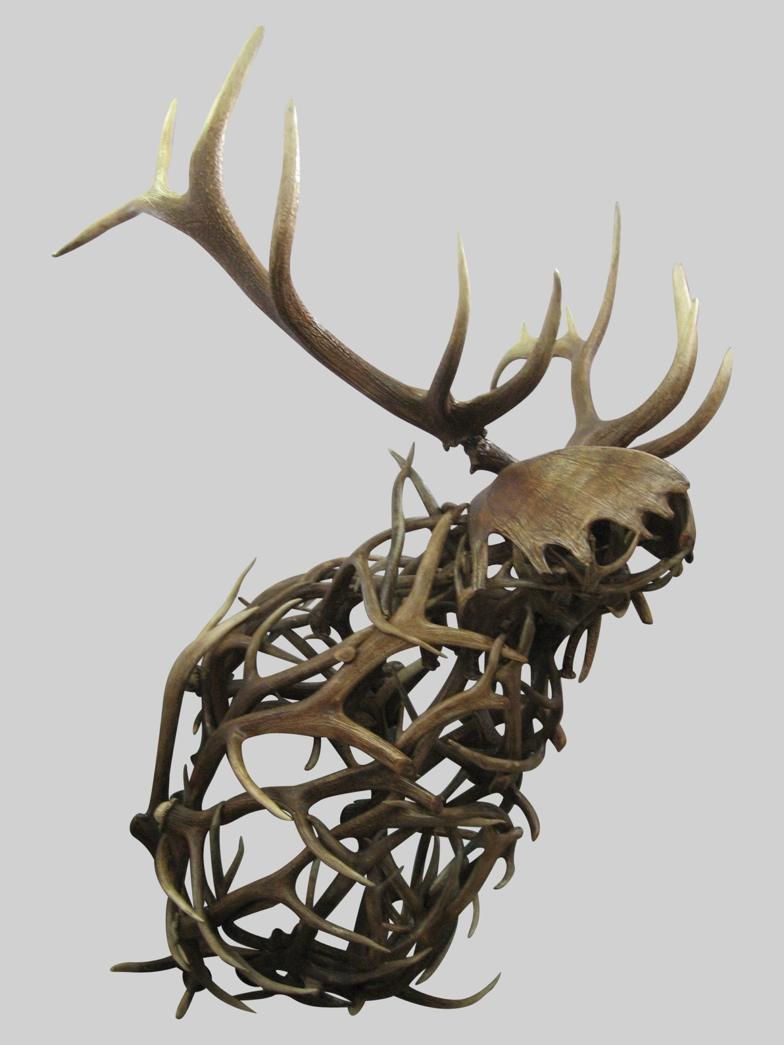 Sir Lancelot - Elk Head Wall Mount Sculpture | The Peak Antler Lighting Co